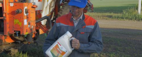 Почему МайсТер Пауэр лучший гербицид по кукурузе? Опыт агронома